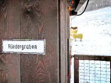 Beste Spielothek in Puchberg am Schneeberg finden